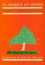el-bosque-en-otono